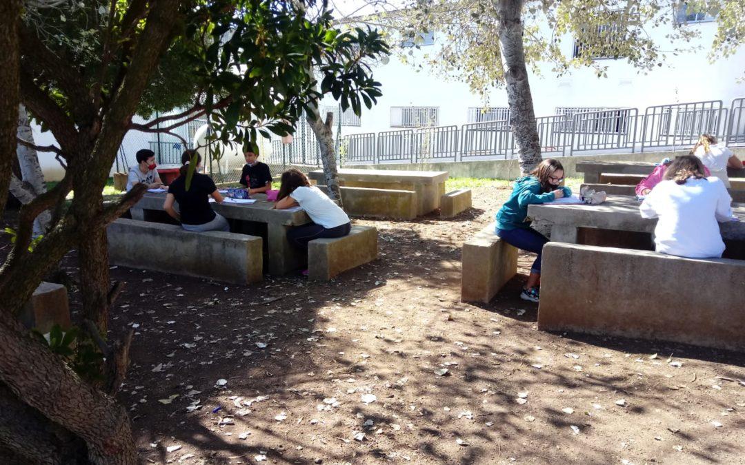 CLASES EN LA NATURALEZA